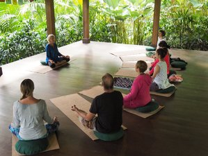 8 Days Writing for Wellbeing, Meditation, and Yoga Retreat in Bali, Indonesia