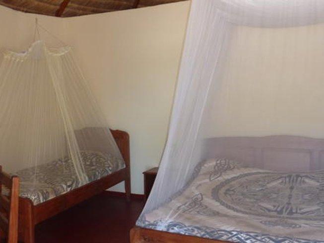 11 Days Madagascar Wildlife Tour