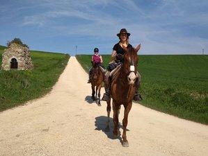 8 Days Scenic Camino de Santiago Horse Riding Holiday in Spain