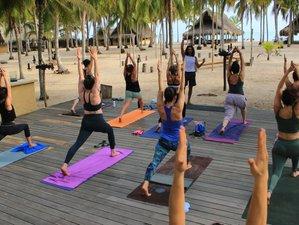 4 días de retiro de yoga con fuego y cacao, meditación y más en Palomino