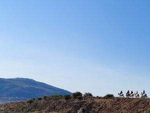 7 Day Stunning Castles of Gredos Mountains Horse Riding Holiday in Avila, Spain