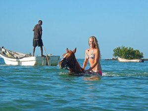 5 Days African Paradise Horse Riding Holiday in Vilanculos, Mozambique