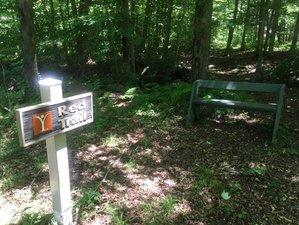 3 Days Yoga, Ayurveda, and Hiking Weekend Retreat in Pennsylvania, USA