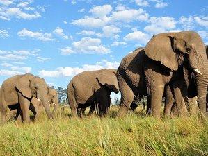 7 Days Classic Cultural Safari Tour in Tanzania