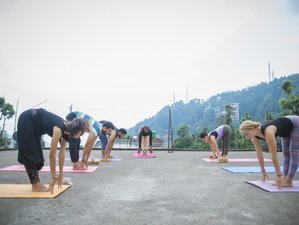 28 Days 200-Hour Ashtanga Yoga Teacher Training Course in Rishikesh, India