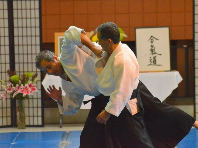 4 Days Summer Aikido Retreat in California, USA