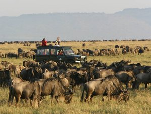 10 Days Wonderful Big Five Safari in Kenya