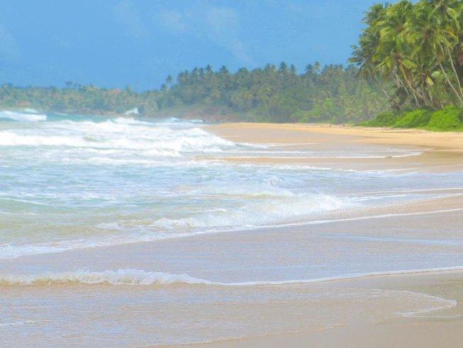 6 días retiro de yoga y meditación en Matara, Sri Lanka