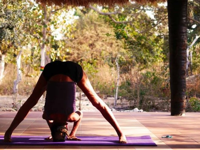 8 Days Vinyasa Flow Yoga Holidays in Gambia