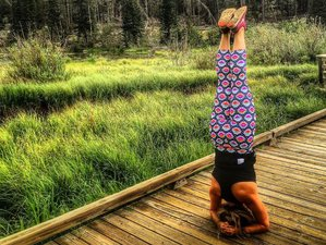 5 Tage Frauen Wander und SUP Yoga Retreat in Colorado, USA