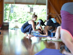 6 Days Go Deeper Yoga Retreat in Big Island, Hawaii