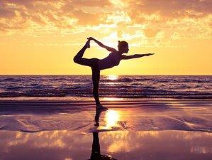 26 Day 200-Hour Alliance Certified Yoga Teacher Training