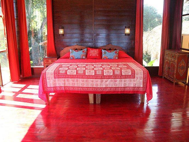 8 Days Hang Music & Vinyasa Yoga Retreat in Costa Rica