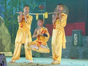 1 Year Traditional Shaolin Kung Fu, Wing Chun,Taiji, Qigong Training in China