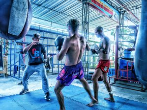7 Days Martial Arts Camp in Koh Phangan, Thailand