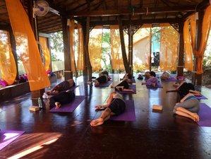 7-Daagse Pure Yogavakantie in Goa