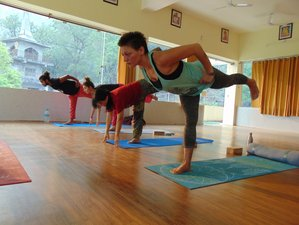 200 Hour Affordable Multi Style Yoga Teacher Training in Rishikesh, India