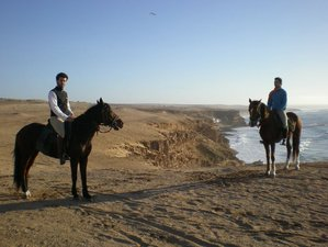 8 Days Sable d'Or Horse Riding Holiday in Souss Massa, Morocco