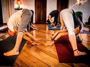 22 Day 200-Hour Tantra Yoga Arts Shamanism Yoga Teacher Training in Steckborn Near Lake Constance