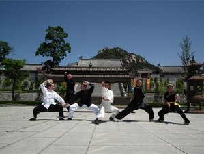 1 Year Traditional Kung Fu Training in Shandong, China