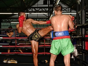 7 Day Muay Thai or Boxing School in Pattaya