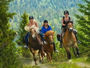 5 Days Experienced Horse Riding Holiday in Venabygd, Norway