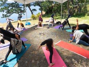 33 jours-300h en formation de professeur de yoga et guérison chamanique à Osa, Costa Rica