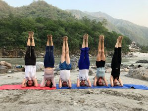 25 Days 200 Hour Yoga Teacher Training with Emotional Blockage Course & Ayurveda in Rishikesh, India