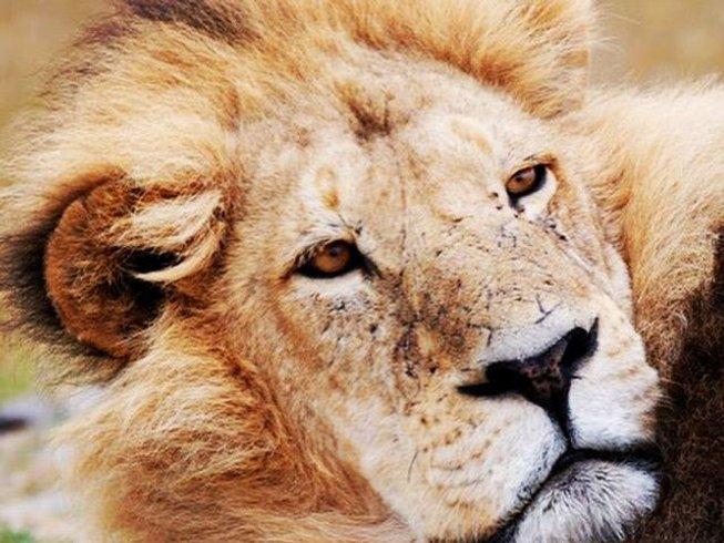 9 Days Namibia Safaris