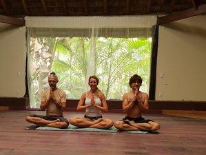 7 Days Ashtanga and Yin yoga Retreat in Bahia, Brazil