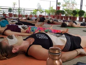 11 Day 100-Hour Hatha Yoga Teacher Training Certification Course in Goa