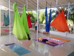 24 Days 200-Hour Multi style YTTC with Aerial, Acro, and Ayurveda in Goa, India