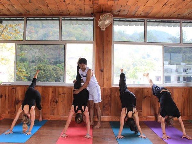 29 días profesorado del antiguo arte del yoga de 200 horas en ...
