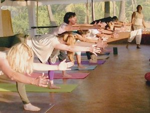 4 días de meditación Tantra y retiro de yoga en Goa, India