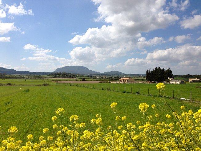 6-Daagse Zuivering Beweging en Yoga Retraite in Mallorca, Spanje