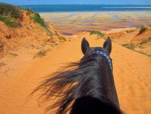 8 Days Epic Horse Riding Safari in Vilanculos, Mozambique