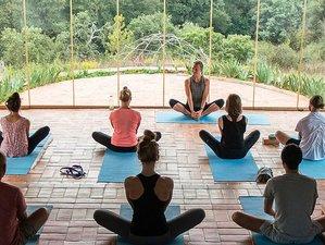 6 Day Women's Retreat With Shiatsu, Meditation, and Yoga in São Teotónio