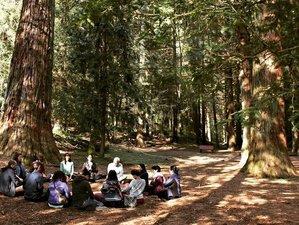 5 Tage 5 Elemente Yoga und Meditation Retreat in Katalonien, Spanien