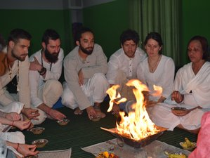26 Days 200 Hours Multistyle Yoga Teacher Training in Rishikesh, India