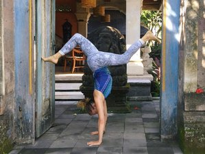 6 Days Cooking and Yoga Retreat in Bali, Indonesia