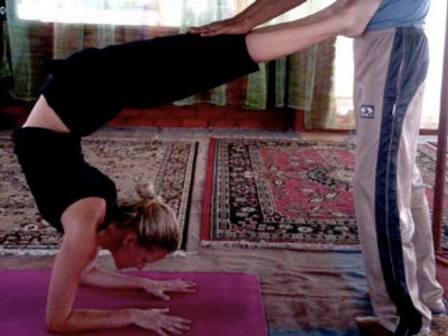 28 Days 200-Hour Yoga Teacher Training in Dharamsala, India