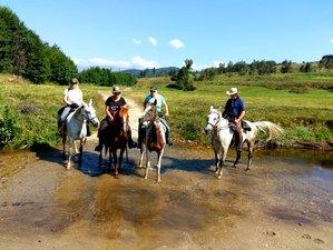 8 Days Point to Point Horse Riding Holiday in Sredna Gora Mountain, Bulgaria