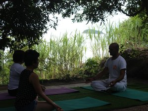 4 Days Hatha Yoga Holiday with Rahul in Hoi An, Vietnam
