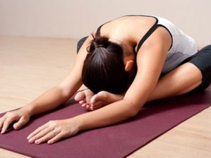 8 Days 50hr YA Yin Yoga Teacher Training in India