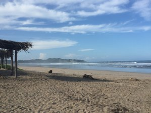 Ignite Your Personal Creativity Through Yoga and Painting Retreat in Guanacaste, Costa Rica