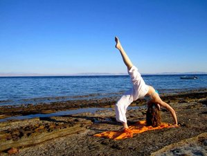 22 Days Hatha Yoga Teacher Training in Dahab, Egypt