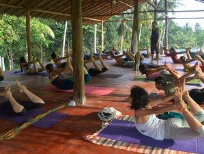 9 días de retiro tradicional de yoga Tantra en Ko Phangan, Tailandia