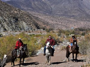 10 Day Horseback Riding Holiday Across the Andes from Argentina to Chile