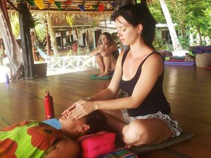 12-Daagse Detox en Yoga Retreat in Koh Phangan, Thailand
