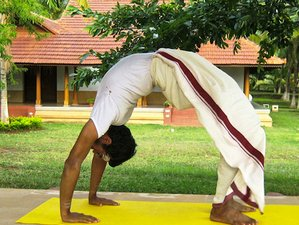 10 Days Ayurvedic Meditation Yoga Retreats in India